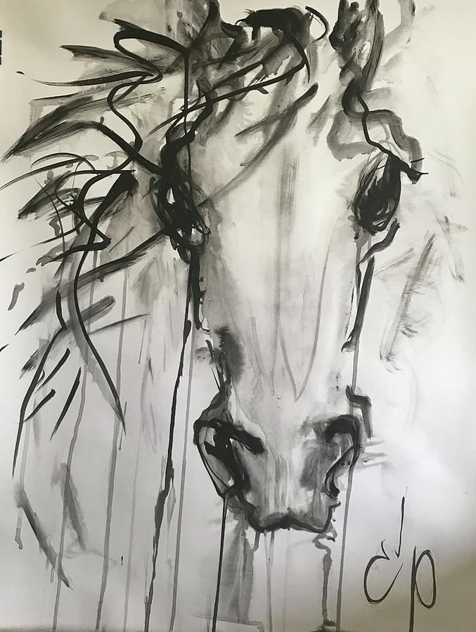 Horse Head by Elizabeth Parashis