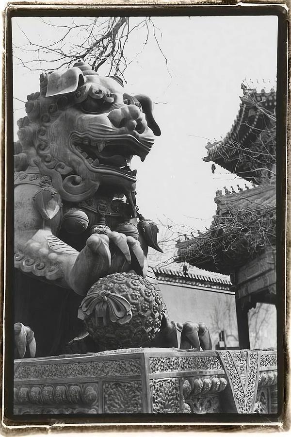 Asian Painting -  Imperial Lion  Beijing    by Laura DeNardo