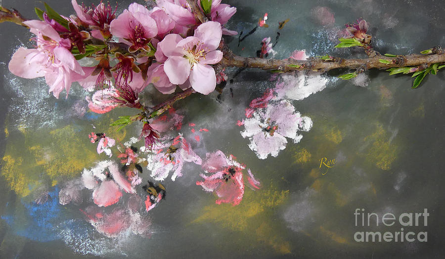 Impressionist Pastel and Peach Blossom by Ryn Shell