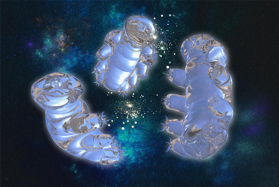 Tardigrades Digital Art - In A Beginning by Carmen Hathaway