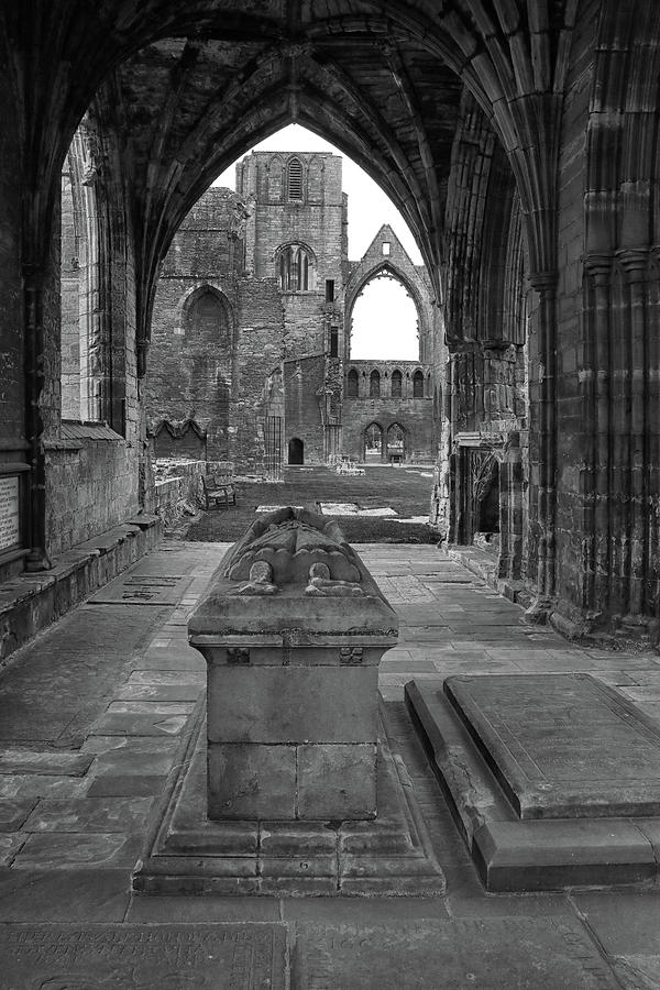 In a Chapel Ruin by Dave Mills