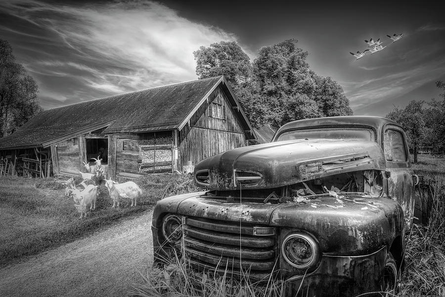 1950 Photograph - In Love With Vintage Black And White Monotones by Debra and Dave Vanderlaan