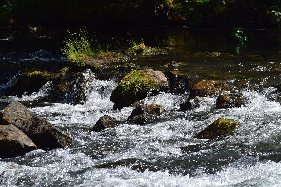 Streams Photograph - In Motion by Lkb Art And Photography