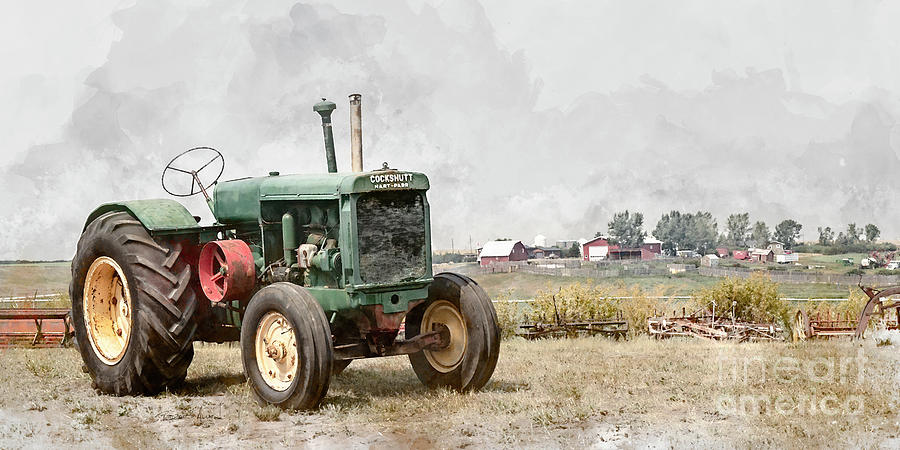 In the Field by Brad Allen Fine Art