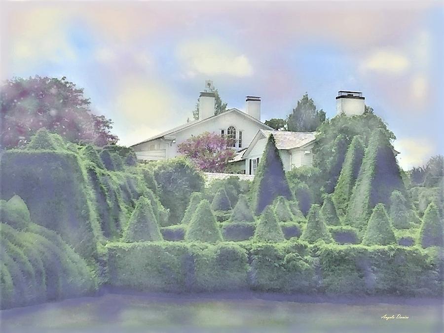 In The Garden by Angela Davies