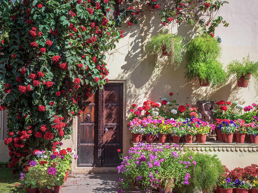 In The Garden by Robin Zygelman