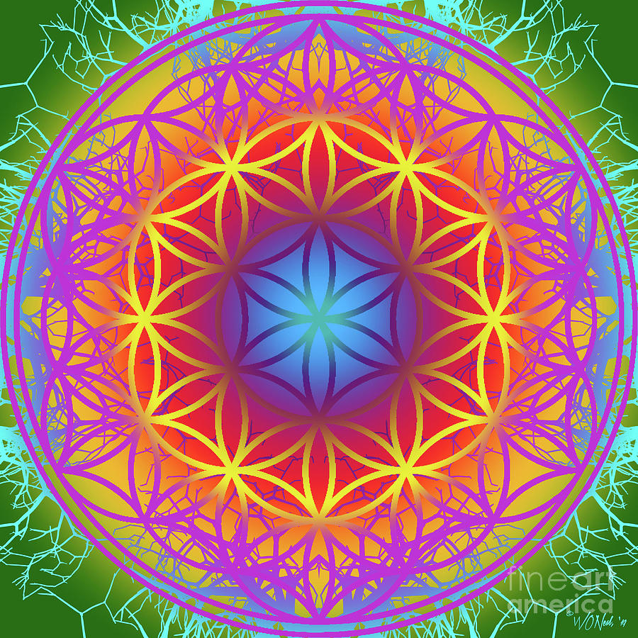 The Flower of Life 2 by Walter Neal