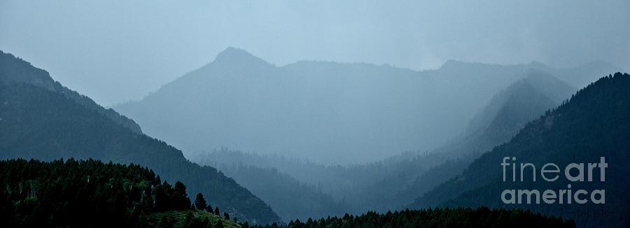 In the Mist by Dorrene BrownButterfield