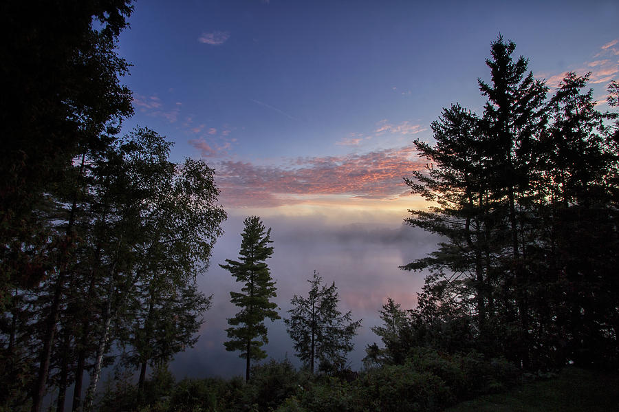 In the Mist of Dawn by Spencer Bush