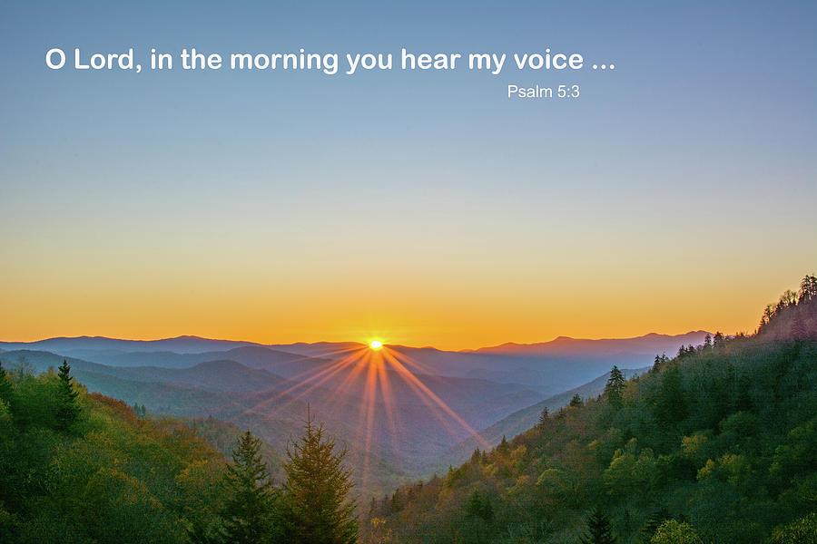 In the morning you hear my voice by Douglas Wielfaert