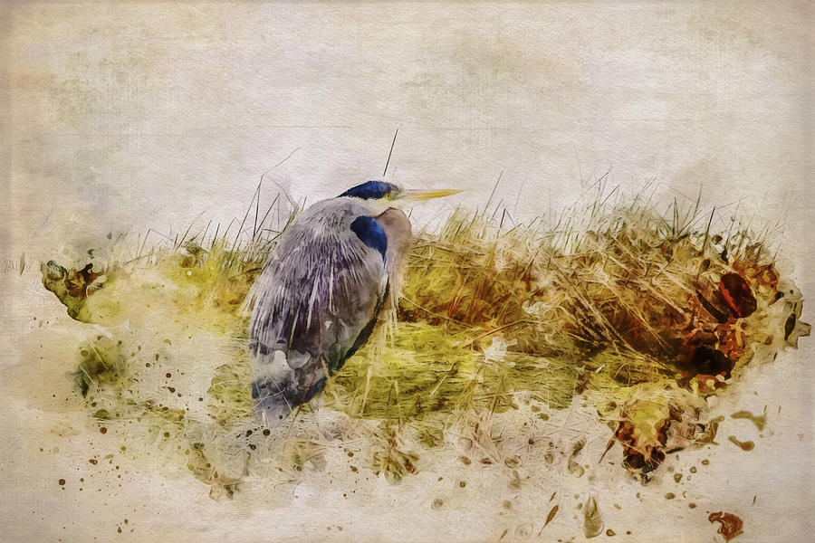 Heron in the Reeds by Marilyn Wilson
