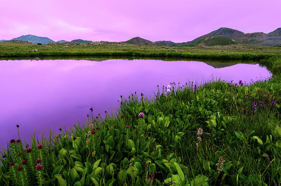 Independence Pass Purple Sunset Photograph by Photo By Matt Payne Of Durango, Colorado