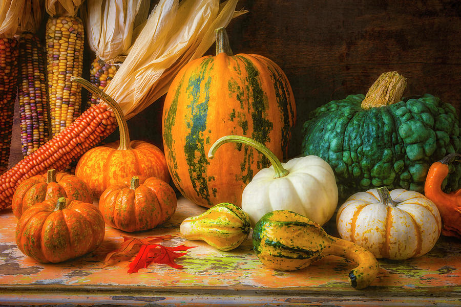 Beauty Photograph - Indian Corn, Pumpkins And Gourds by Garry Gay