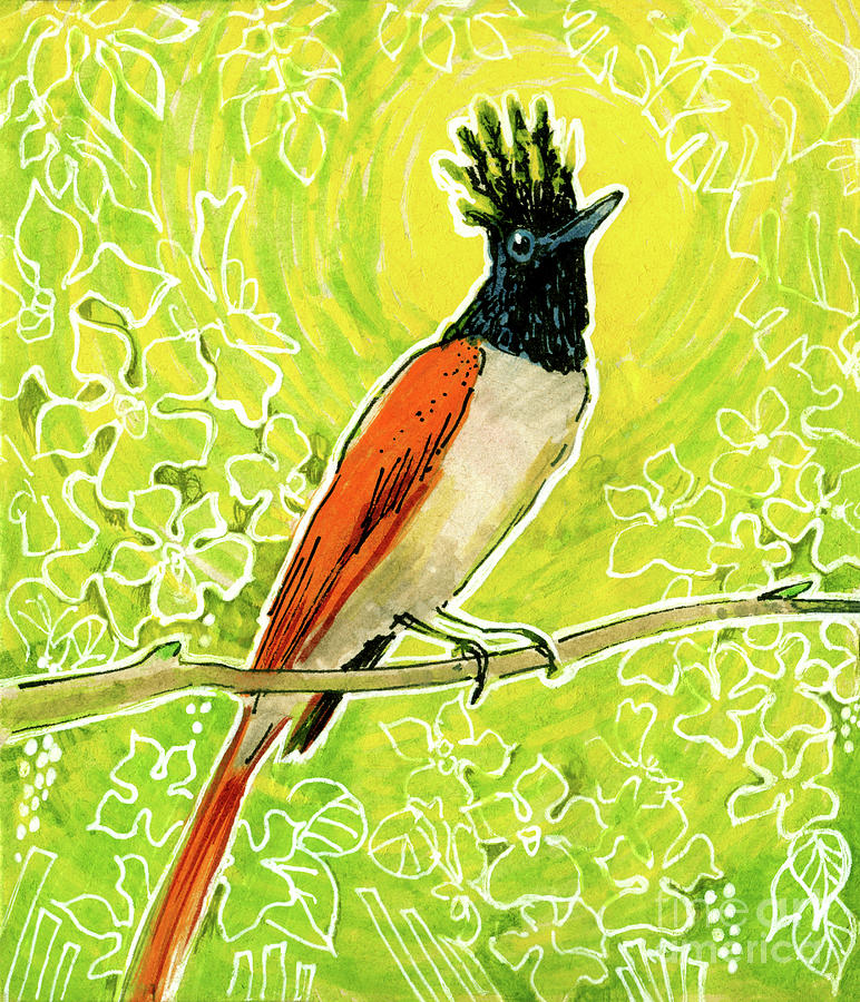 Nature Mixed Media - Indian Paradise Flycatcher Tropical Bird  by Julia Khoroshikh