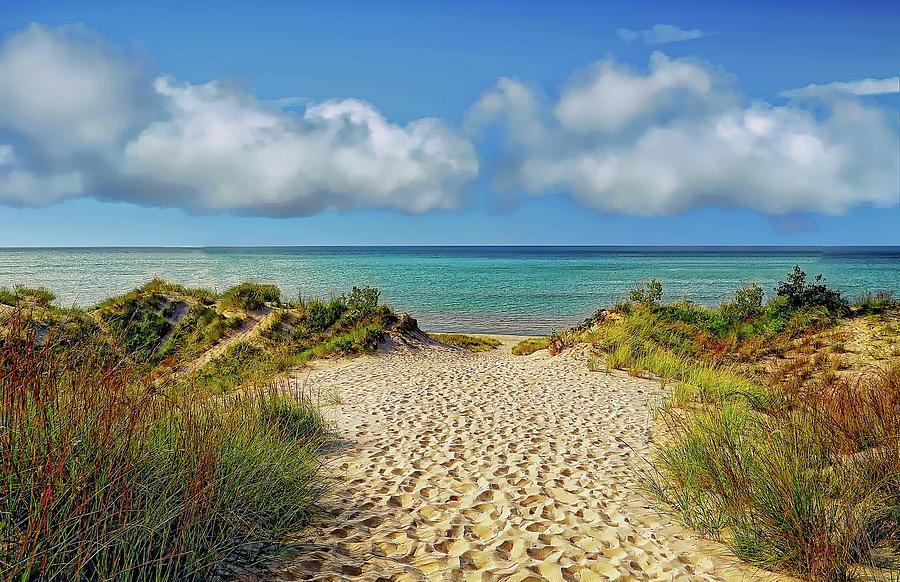 Indiana Dunes State Park by Anthony Dezenzio
