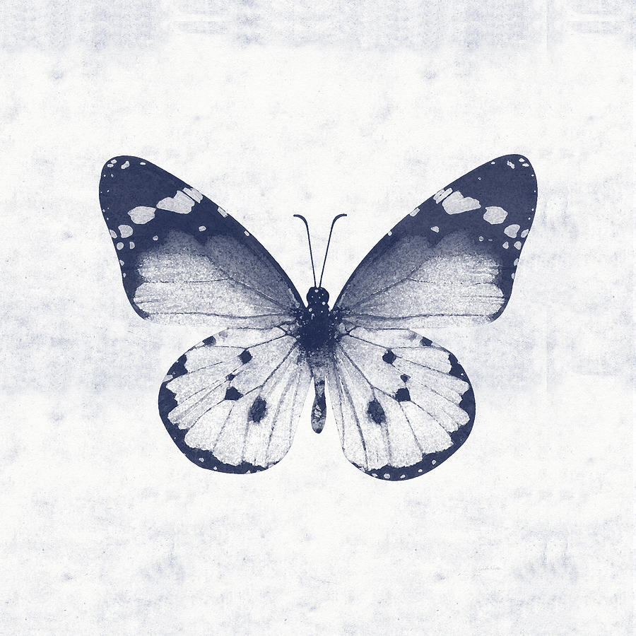 Butterfly Mixed Media - Indigo and White Butterfly 1- Art by Linda Woods by Linda Woods