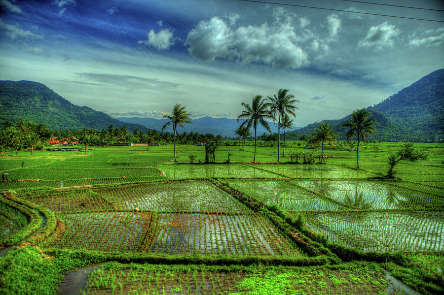 Indonesia - Java - Landscapes And Vistas Photograph by Stewart Leiwakabessy