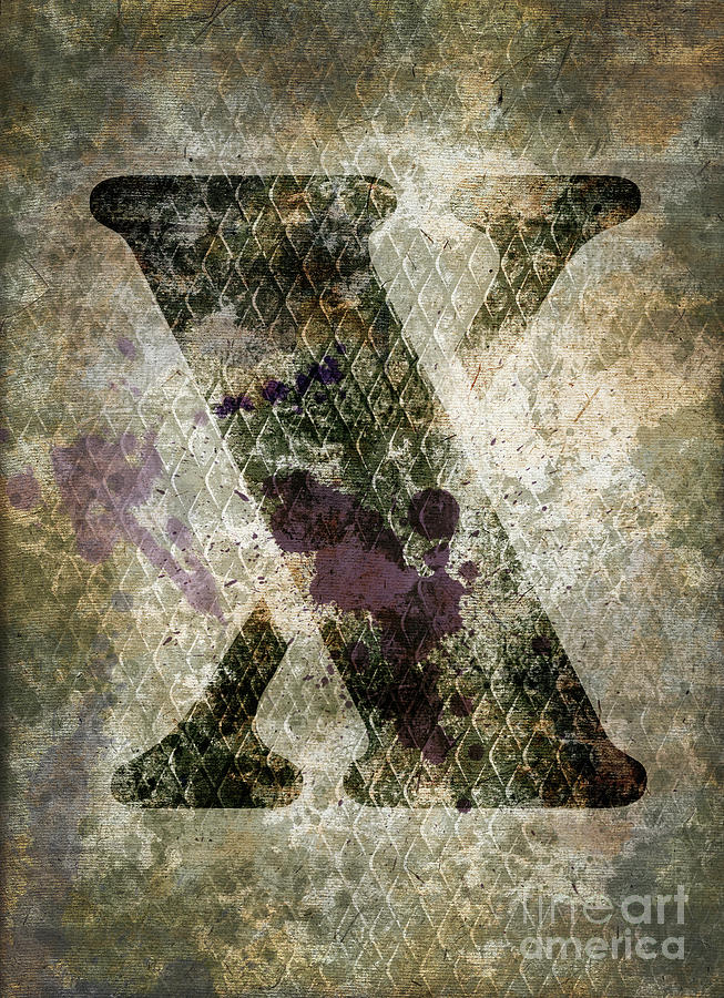 Letter Photograph - Industrial Letter X by Delphimages Photo Creations