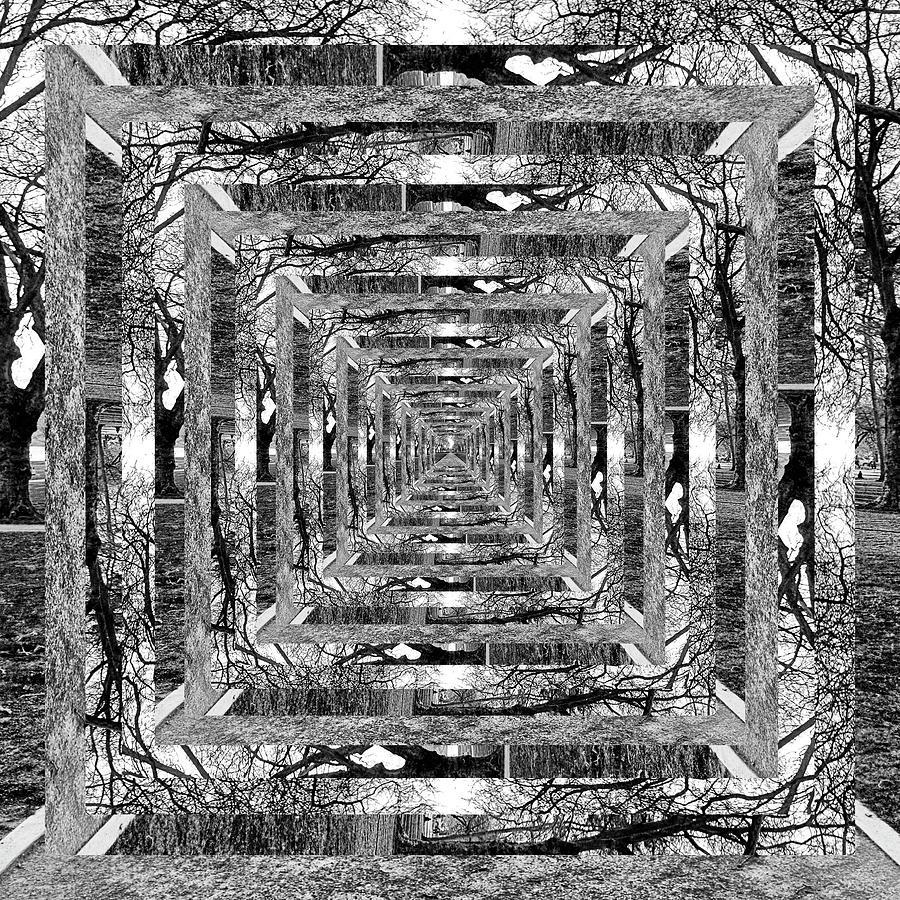 Infinity Tunnel Green Lake Bathhouse Black and White by Pelo Blanco Photo