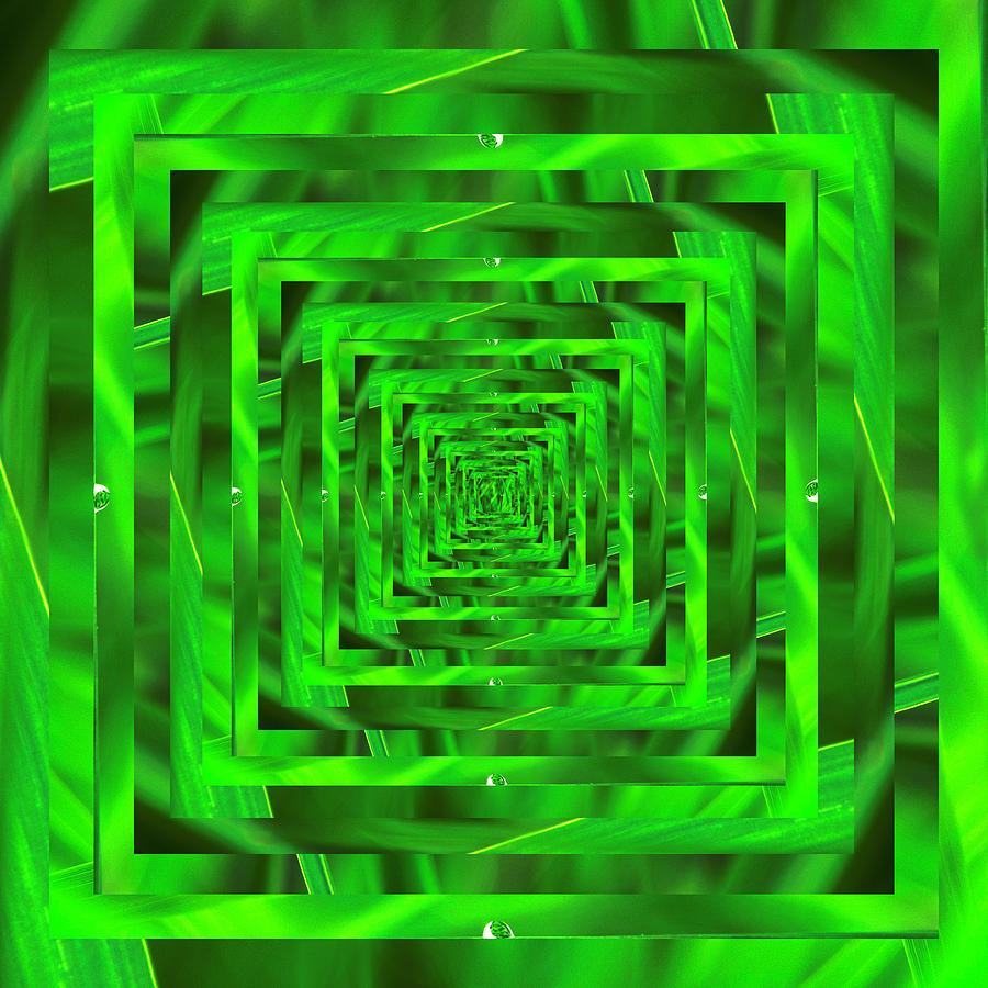 Infinity Tunnel Lake Grass Raindrop 2 by Pelo Blanco Photo