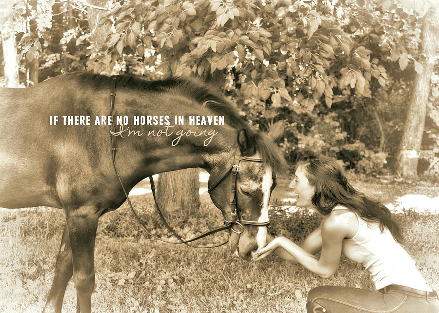 Horse Photograph - Instant Message Quote by JAMART Photography