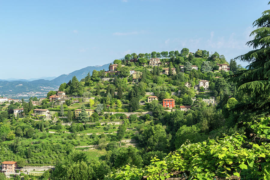 Instantly Choose Your Italian Villa - Verdant Hilltop View in Bergamo Lombardy Italy by Georgia Mizuleva