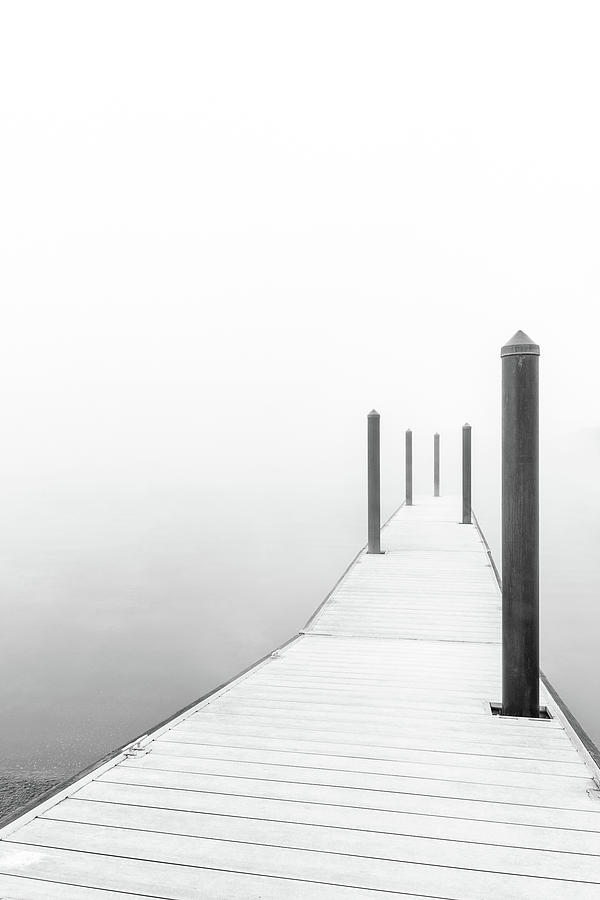 Into the Fog by Douglas Tate