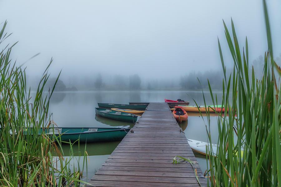 Fog Photograph - Into The Fog by Lorraine Baum