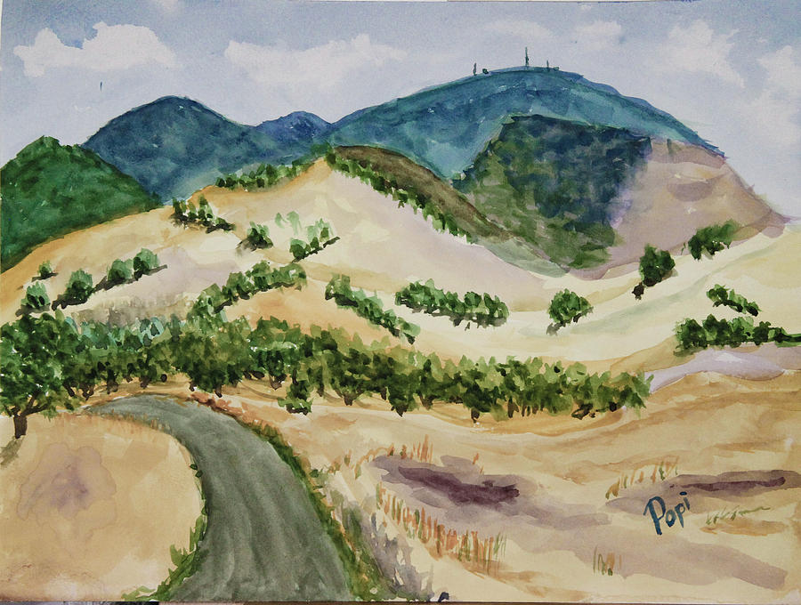 Into the Foothills by Paul Anderson