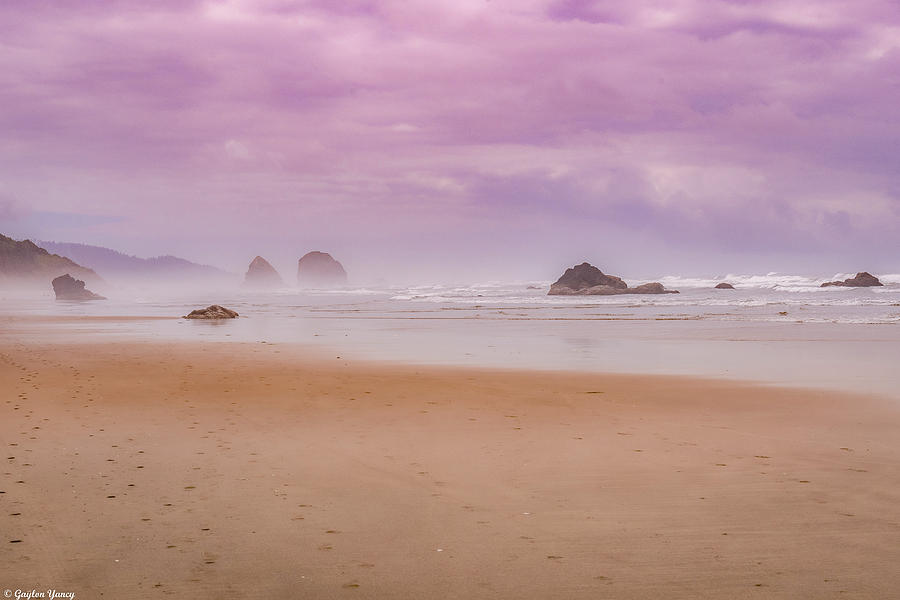 Into the Mist by Gaylon Yancy