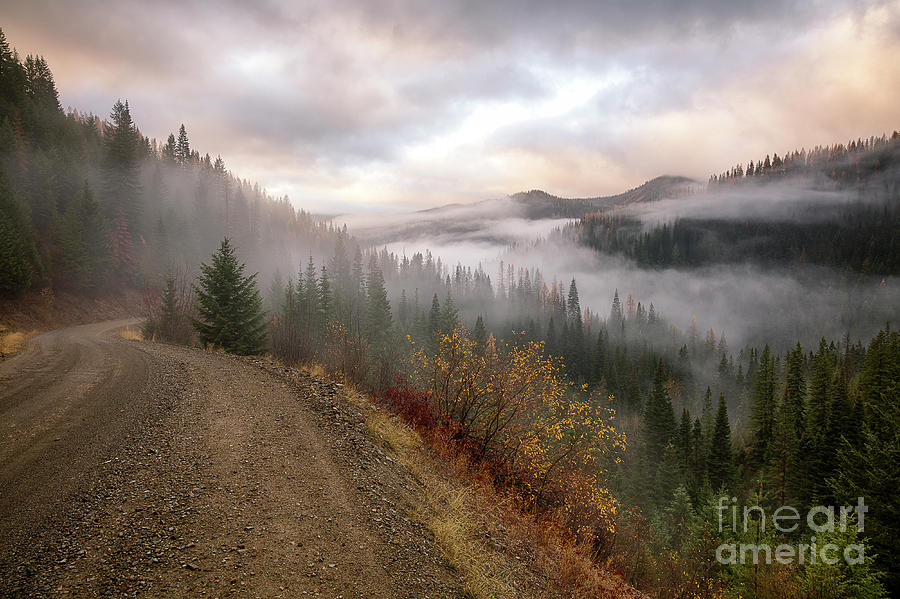 Into the Mists by Idaho Scenic Images Linda Lantzy