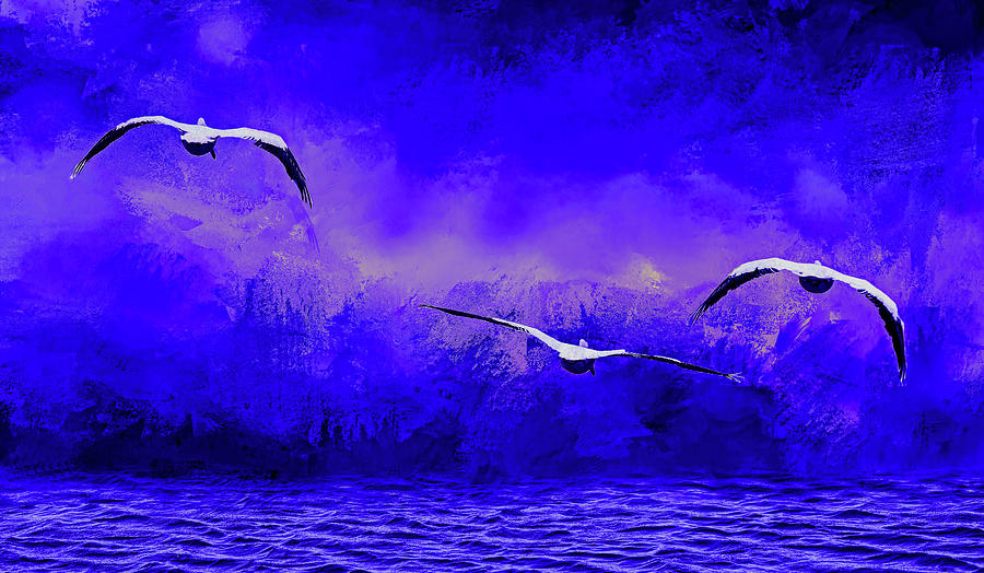 Into The Night   American White Pelicans At Sea Abstract 2 Digital Art