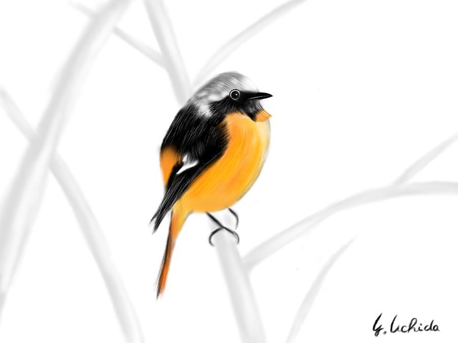 Ipad Painting - iPad sketch 1.29.19 bird by Yoshiyuki Uchida