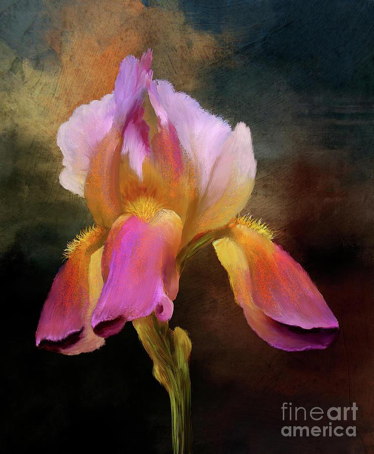 Iris With Impasto