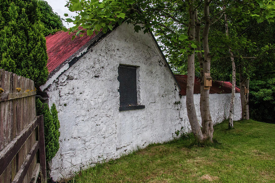 Irish Cottage by Andrew Wilson