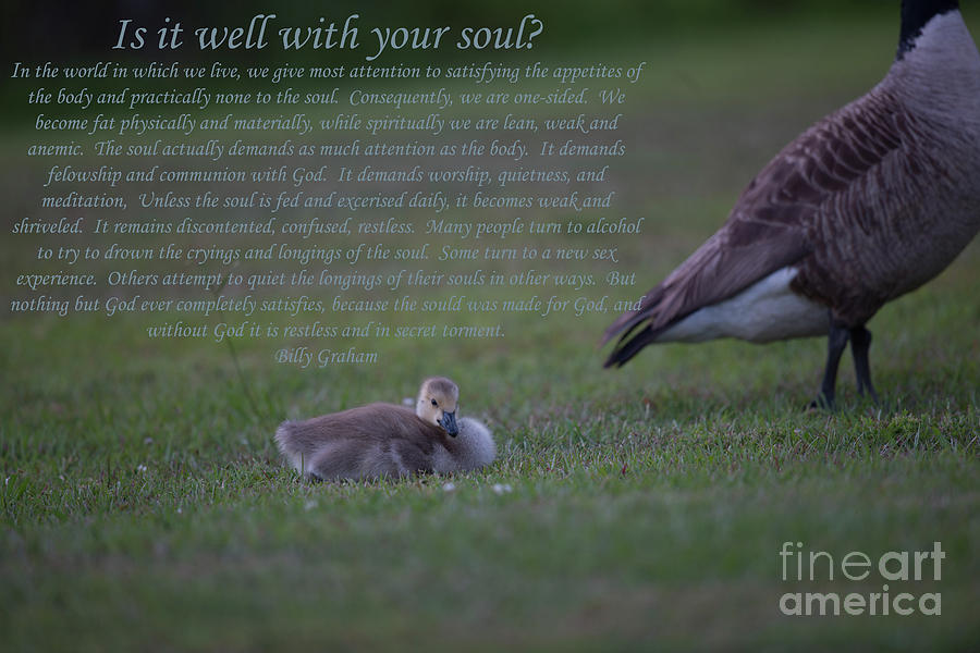 Is It Well With Your Soul Photograph
