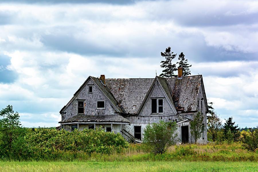 Island Ellie Abandoned by Douglas Wielfaert