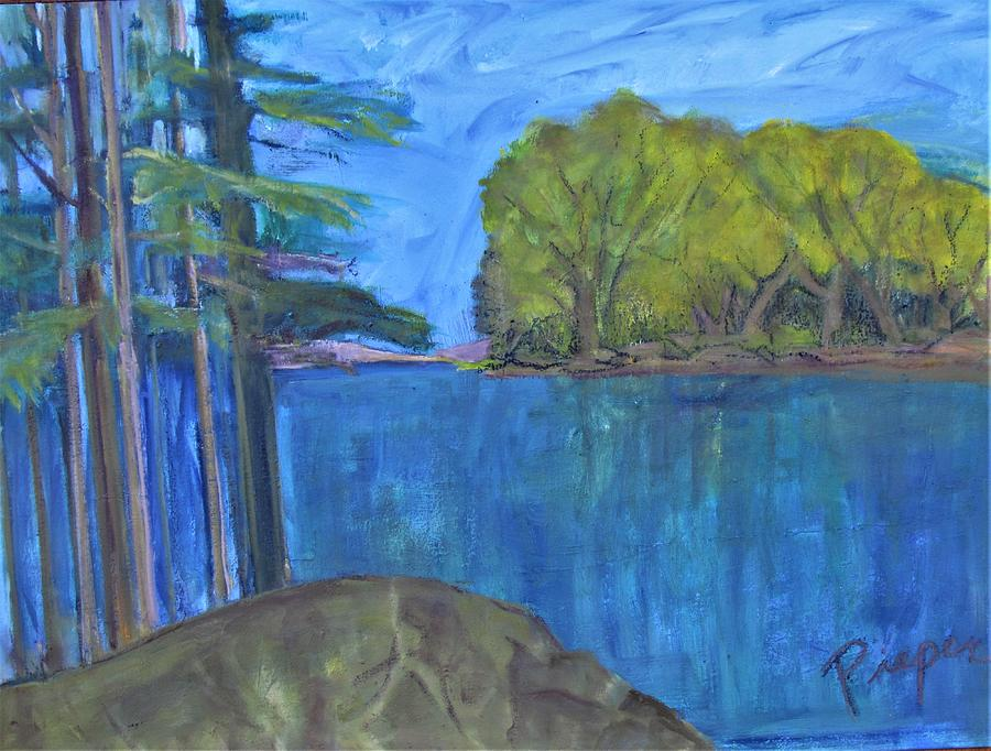 Islands of Diversity in the Adirondacks by Betty Pieper