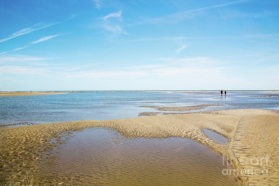 Isle Of Palms Beach And Tide Pools by Sharon McConnell
