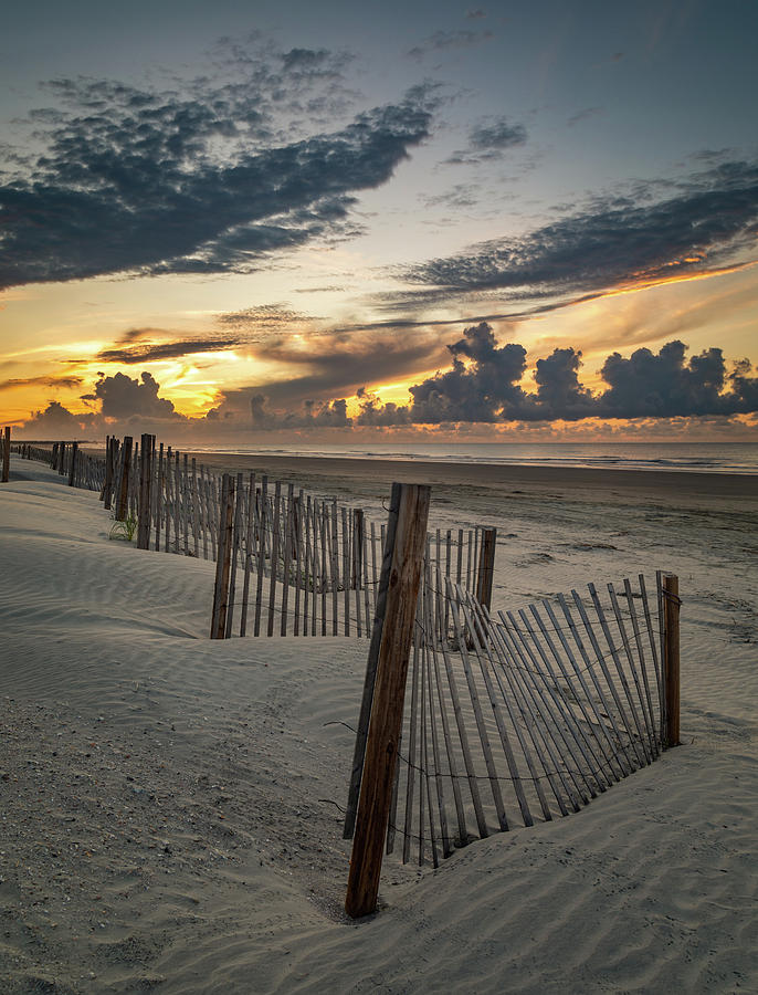 Isle of Palms Beach Dunes by Donnie Whitaker