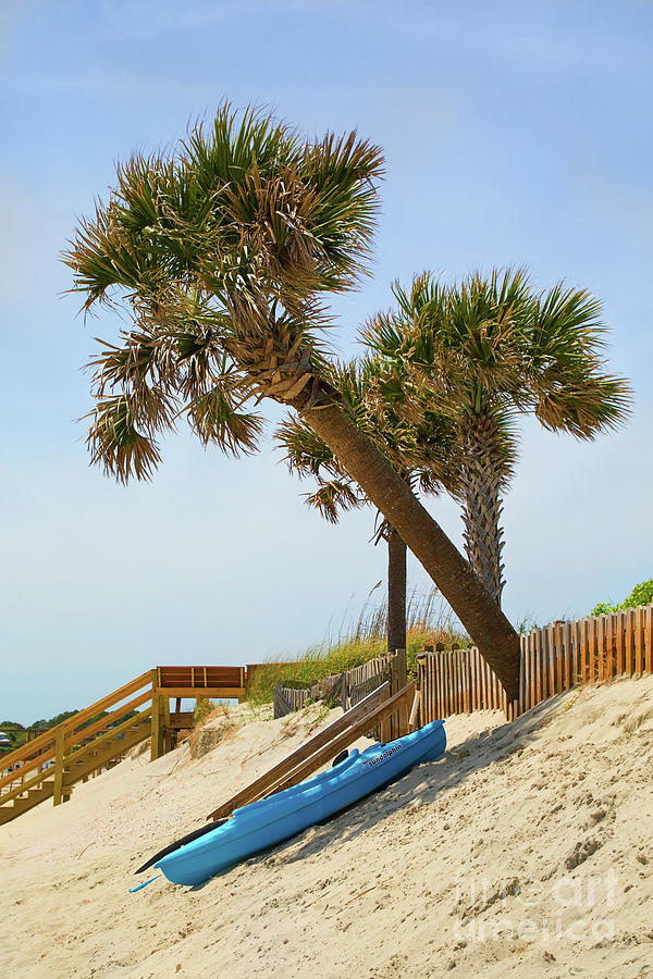 Isle Of Palms Kayak Siesta by Sharon McConnell