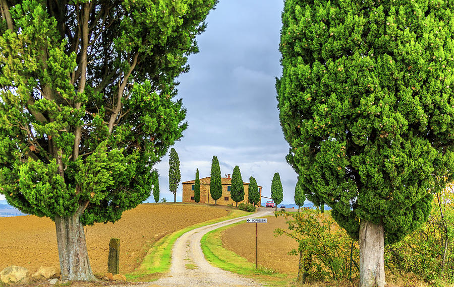 Italian Country Living by Lev Kaytsner