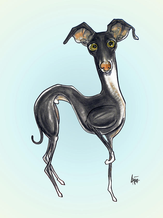 Italian Greyhound by John LaFree