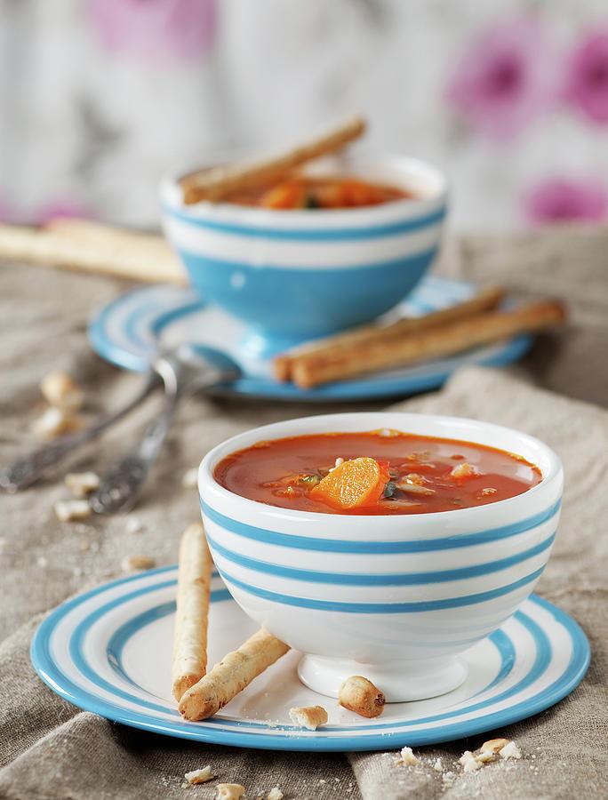 Italian Vegetable Soup Photograph by Oxana Denezhkina