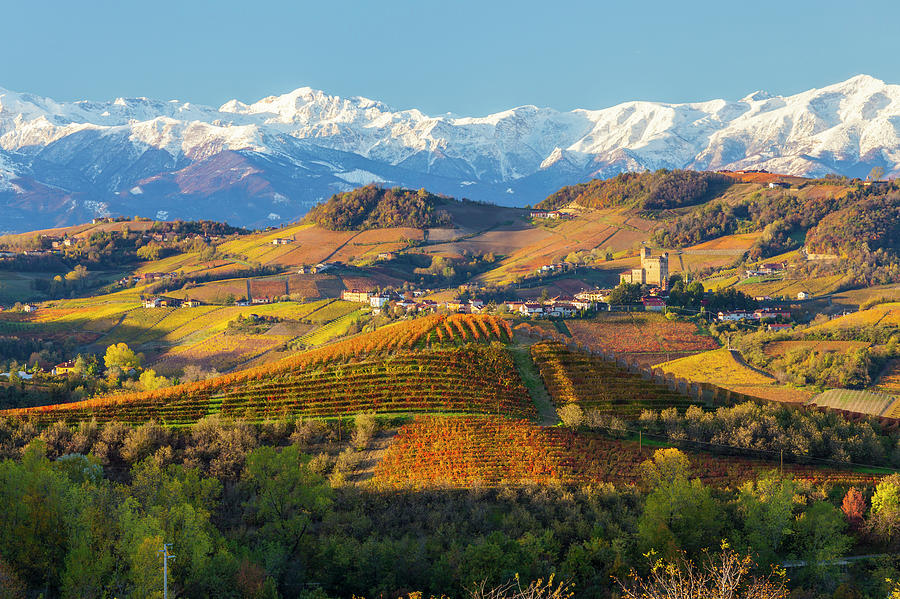 Italy, Piedmont, Langhe, Cuneo Photograph by Peter Adams