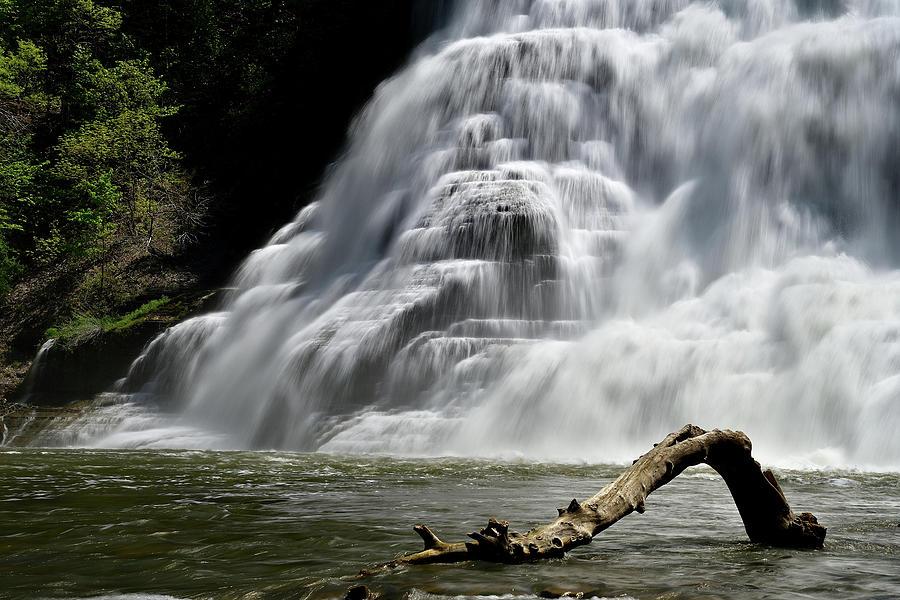 Ithaca Falls by Michael Morse