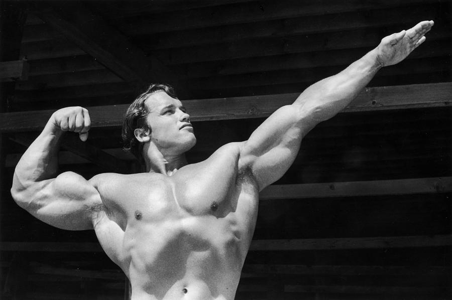 Its Muscle Photograph by Hulton Archive