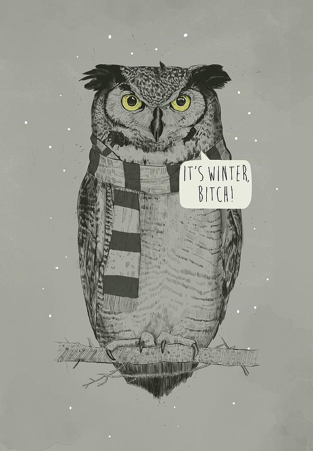 Owl Mixed Media - Its Winter Bitch by Balazs Solti