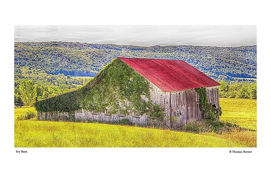Ivy Barn by R Thomas Berner