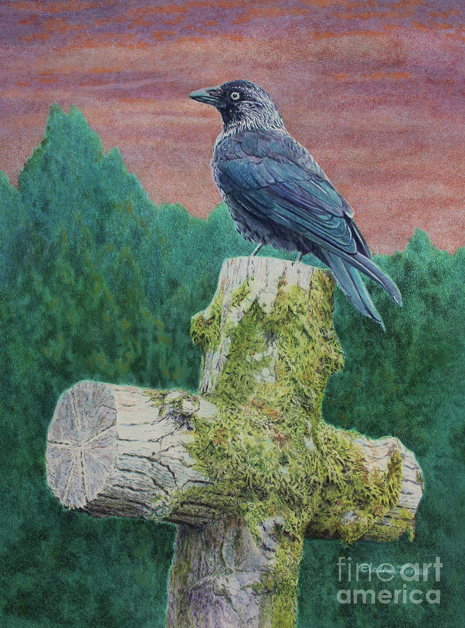 Jackdaw on the Old Mossy Cross by Elaine Jones